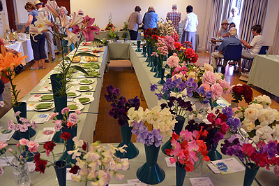 Flower Show July 2015